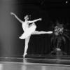 Shirley Bailarina